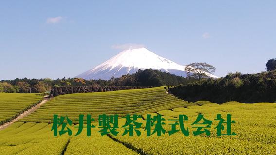 松井製茶株式会社 茶樹の会